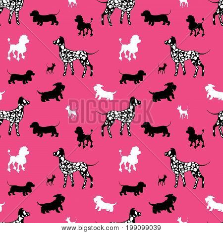 Seamless pattern with black and white dogs silhouettes - Dachshund Dalmatian chihuahua scotchterrier poodle on pink background. Animal design.