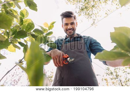 Camera Point Of View Of Smiling Gardener With Pruning Shears Cutting Plant In Garden