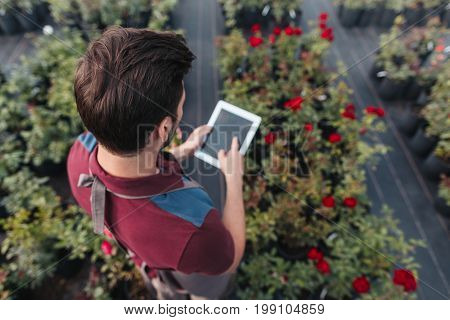 Back View Of Gardener Using Tablet While Working In Garden
