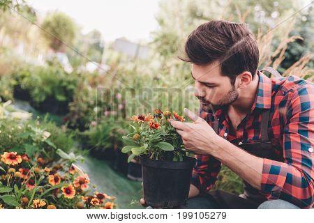 Portrait Of Focused Gardener Holding Flower In Flowerpot While Checking Plants In Garden