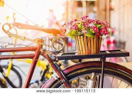 Bicycles old vintage flowers in a basket. Parked on the sidewall of the wooden house ideal for design work Classic hoodie style