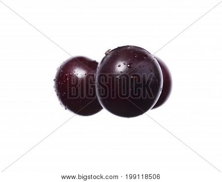 Closeup of aromatic sappy decorative plums, burgundy fruits for a decoration of desserts and tasty pies isolated on a white background.