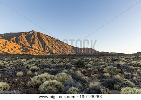 Canary Island Tenerife, Parque Nacional del Teide. Spain