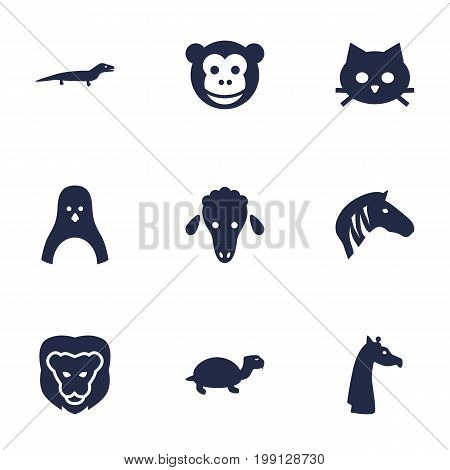Collection Of Gecko, Ape, Pussy And Other Elements.  Set Of 9 Alive Icons Set.