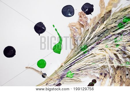 The herbarium from the meadow grass is tied with a jute rope with a multicolored paint