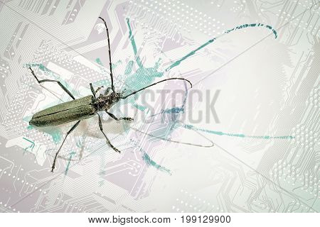 Concept bugs cyberthreatment - longhorn beetle on a computer circuit board stylized with a background with copy space for your text.