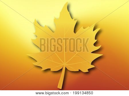 Yellow maple leaf on autumn background, vector art illustration.