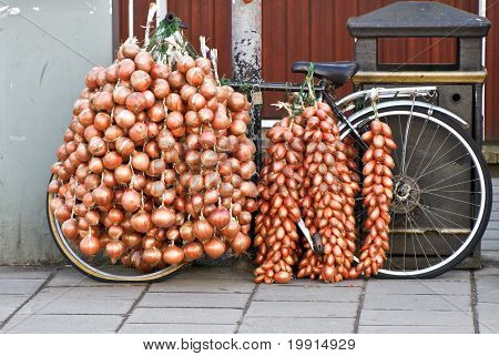 Onion Bicycle
