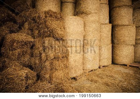 Farm Hay Storage Facility. Pile of Bales of Hay. Livestock Food