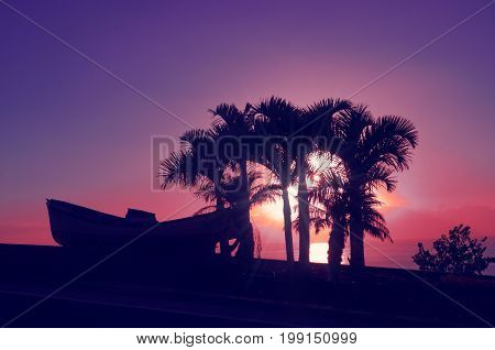 Silhouette of palm trees and boat on the background of a beautiful purple sunset in Los Gigantes. Night landscape background. Tenerife Canary Islands Spain