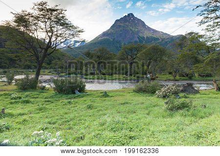 patagonian landscape Argentina Ushuaia Tierra del Fuego
