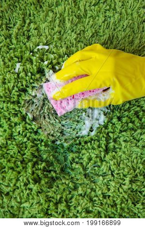 Hand in rubber glove cleaning carpet with sponge