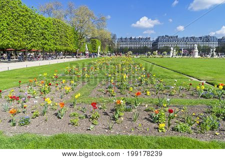 Lawn With Flowers In The Garden Of The Tuileries. Paris, France.