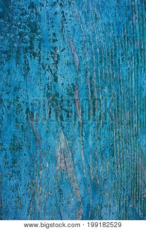 background of old blue paint on a wooden board