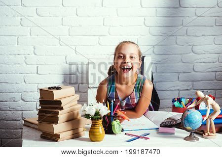 Back To School Concept. Schoolgirl With Smiling Face