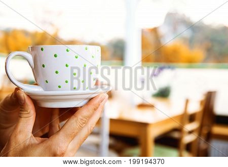 Hands holding white cup in polka dot of coffee cacao hot chocolate or tea and enjoy with view on the Bled Lake and Castle in window from cafe in autumn time.