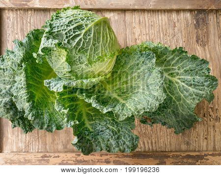 Juicy savoy cabbage on wooden background. Close-up