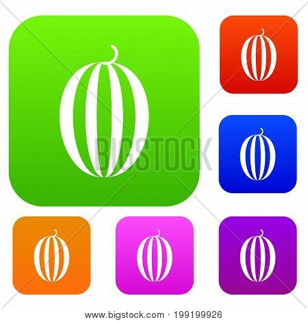 Striped melon set icon in different colors isolated vector illustration. Premium collection