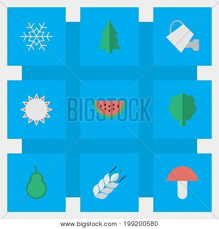 Elements Punching Bag, Flake Of Snow, Melon And Other Synonyms Snow, Snowflake And Sun.  Vector Illustration Set Of Simple Horticulture Icons.