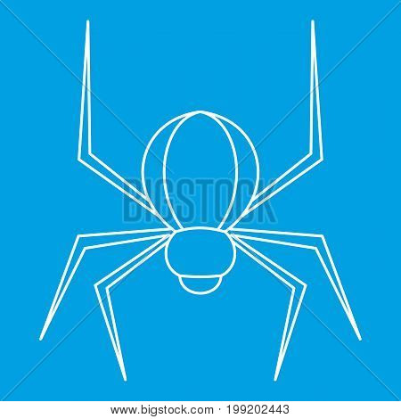 Spider insect icon blue outline style isolated vector illustration. Thin line sign