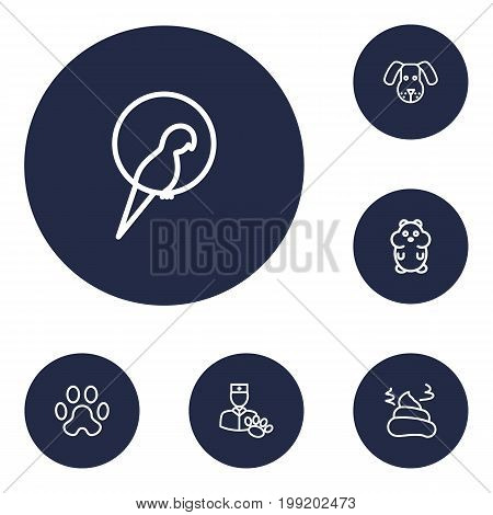 Collection Of Pile Of Poo, Parrot, Dog And Other Elements.  Set Of 6 Pets Outline Icons Set.