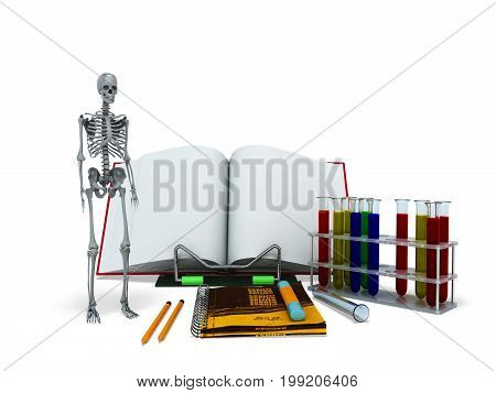 Concepts Of School And Education Biology Test Tubes Skeleton 3D Render On White Background