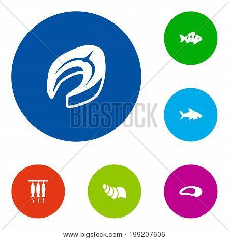 Collection Of Fish, Sink, Shark And Other Elements.  Set Of 6 Seafood Icons Set.