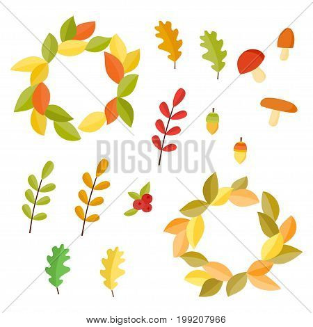 Vector Autumn set. Collection with autumn signs: acorns,  mushrooms, oak leafs.