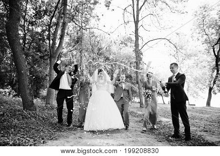 Wedding Couple And Groomsmen With Bridesmaids Drinking Champagne In The Forest. Black And White Phot