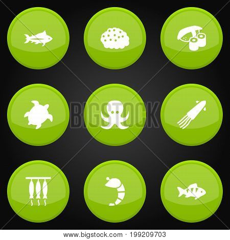 Collection Of Fish, Tunny, Smoked And Other Elements.  Set Of 9 Seafood Icons Set.