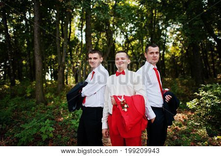 Handsome Groom And His Groomsmen Posing In The Forest On The Wedding Day.