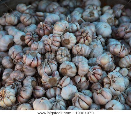 Ripe Garlic Stock On The Market