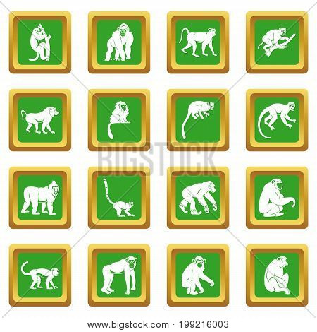 Monkey types icons set in green color isolated vector illustration for web and any design