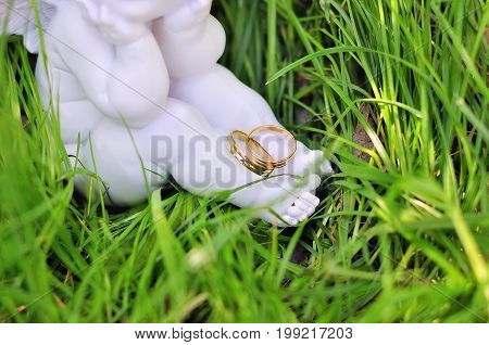 two golden wedding rings on nature background