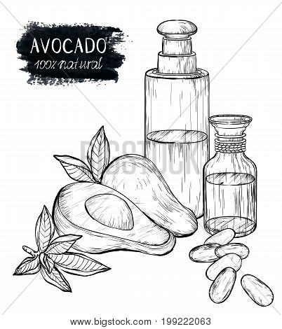 Vector hand drawn sketch avocado set. Whole avocado, half, leaf oil, cream and cosmetic products.