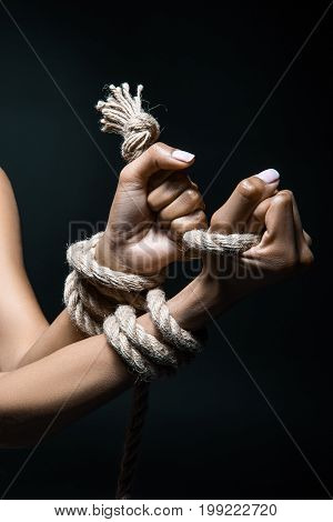 Female Hands Bound With Rope