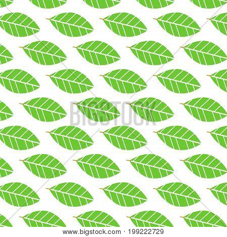 Flat green leave pattern background vector.Nature pattern vector