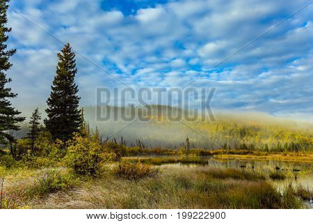 Cool autumn morning in the Rocky Mountains. Morning mist spreads over the forest and Patricia lake.    The concept of ecotourism poster