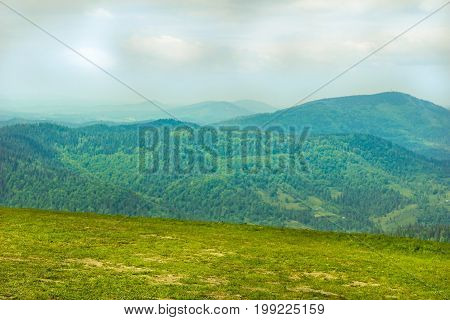 Green glade in a mountain landscape in the summer