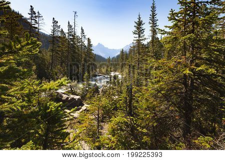 yoho river view yoho national park british columbia, canada