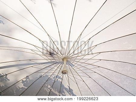 Under White Umbrella