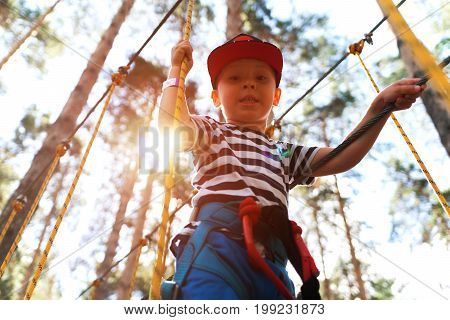 Portrait of happy little boy having fun in extreme rope park. Child equipped with safety straps on hinged trail in adventure park.