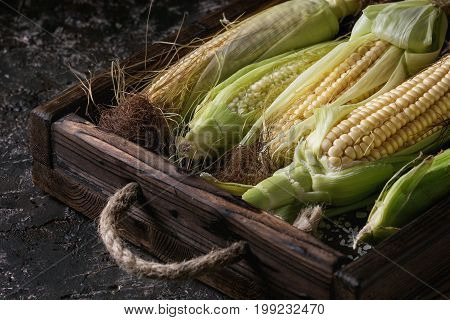 Young raw uncooked corn cobs in leaves in wooden tray. Close up over dark brown concrete texture background.