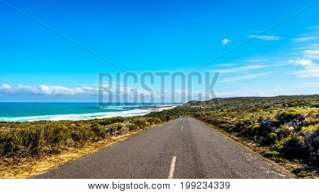 The road from Cape Point to Cape of Good Hope and Platboom Beach in the Cape of Good Hope Nature Reserve in the Cape Peninsula of South Africa