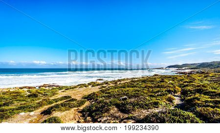 Waves of the Atlantic Ocean rolling into the shore between Cape of Good Hope and Platboom Beach in the Cape of Good Hope Nature Reserve in the Cape Peninsula of South Africa