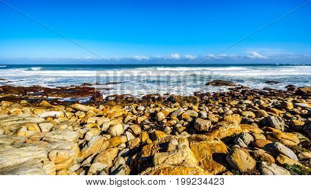 The rocky shoreline of the Atlantic Ocean between Cape of Good Hope and Platboom Beach in the Cape of Good Hope Nature Reserve in the Cape Peninsula of South Africa