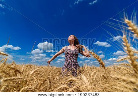 Beautiful Young Woman Walking In Golden Wheat Field With Cloudy Blue Sky Background, Free Space. Lib