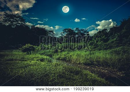 Landscape of night sky with clouds. Beautiful bright full moon above wilderness area in forest serenity nature background. Outdoors at nighttime. The moon taken with my own camera.