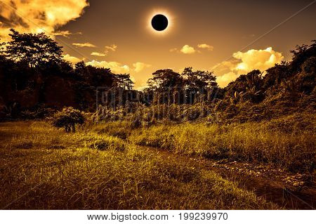 Scientific Natural Phenomenon. Total Solar Eclipse Glowing On Sky In Forest. Sepia Tone.