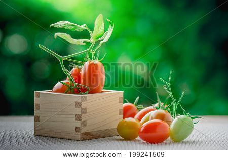 Healthy fruit with fresh Red Sweet tomatoes in a box wood (Cherry Tomato Seeds)